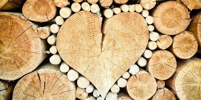 La Transition Socio-écologique Vue Du Cœur